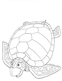 Sea Turtle Eggs Printable Coloring Pages
